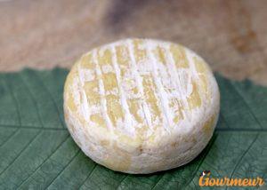 séchon de vache fromage
