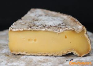 saint-nectaire fromage