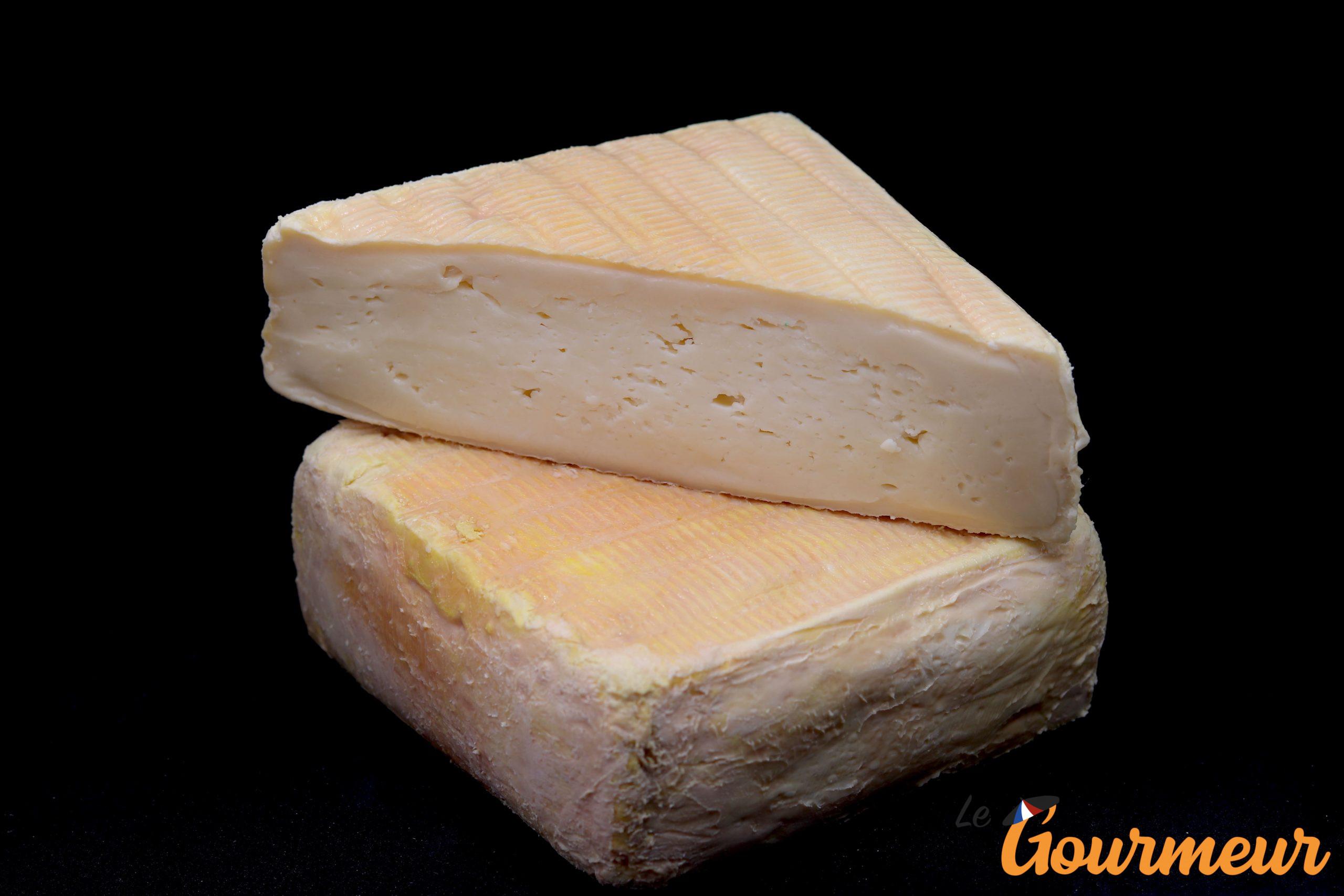vieux gris de lille fromage