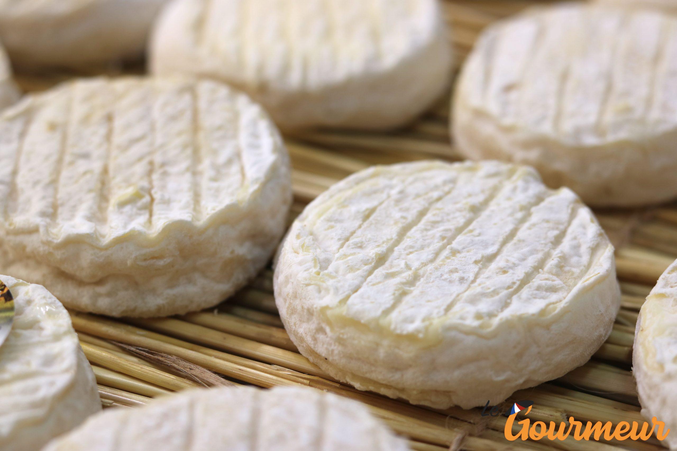 pélardon AOP fromage occitanie